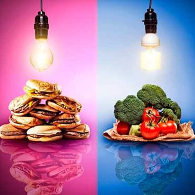 Сыроедение, вегетарианство, сезонное питание