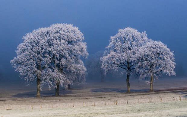 Красота мира, скованного снегами и морозами