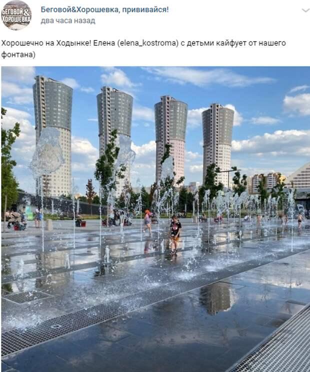 Фото дня: купание в фонтане на Ходынке