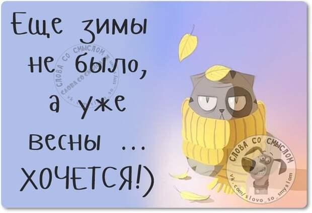 5672049_1447960816_frazki23 (604x415, 40Kb)
