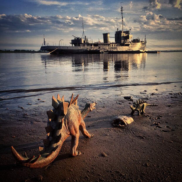 travel-photography-dinosaur-toys-dinodinaseries-jorge-sa_007