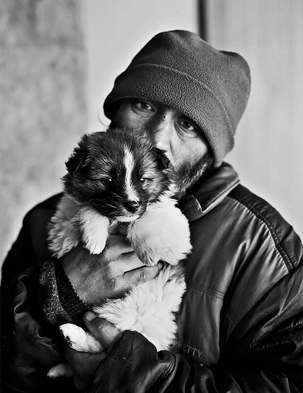 29. Бездомная любовь бездомный, любовь, собака