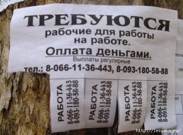 1351743328_1351684122_26 (442x326, 91Kb)