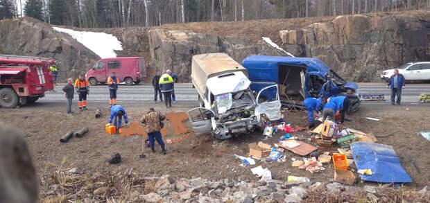 Трое погибли в столкновении «ГАЗели» и микроавтобуса на «Сортавале». Среди пострадавших могут быть петербуржцы