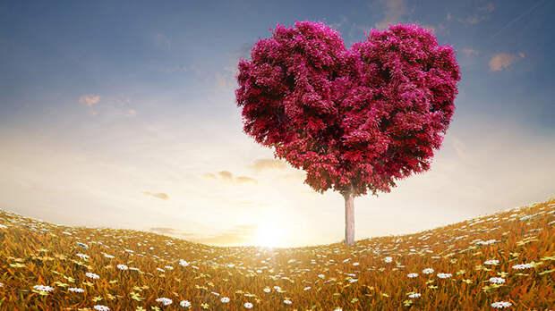 Что значит любить