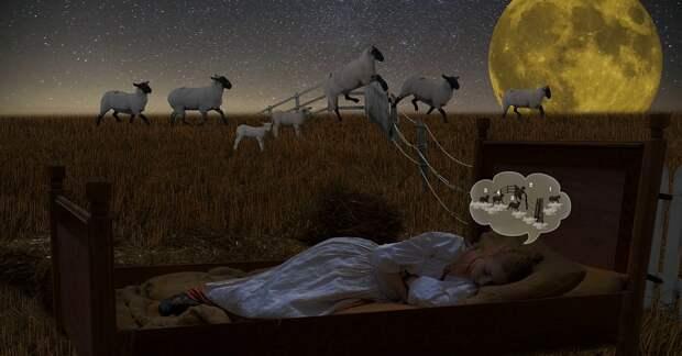 Трюки, которые помогут вам быстро заснуть и спать без задних ног