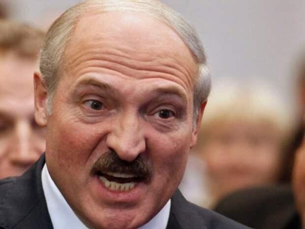 Сидят, как мыши под веником! Лукашенко разбушевался (видео)