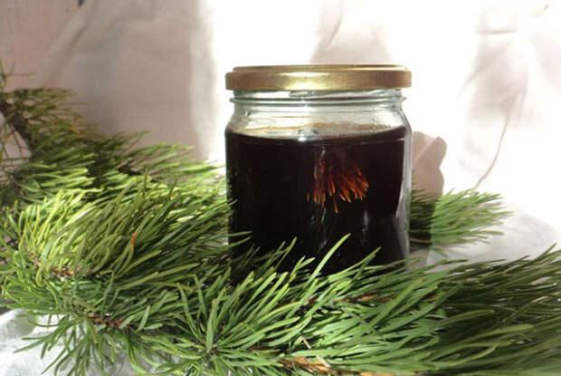 Лечебное варенье из сосновых иголок