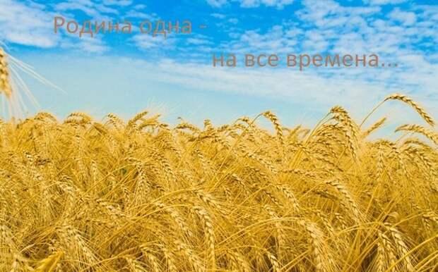 Я – русская! И я горжусь этим.