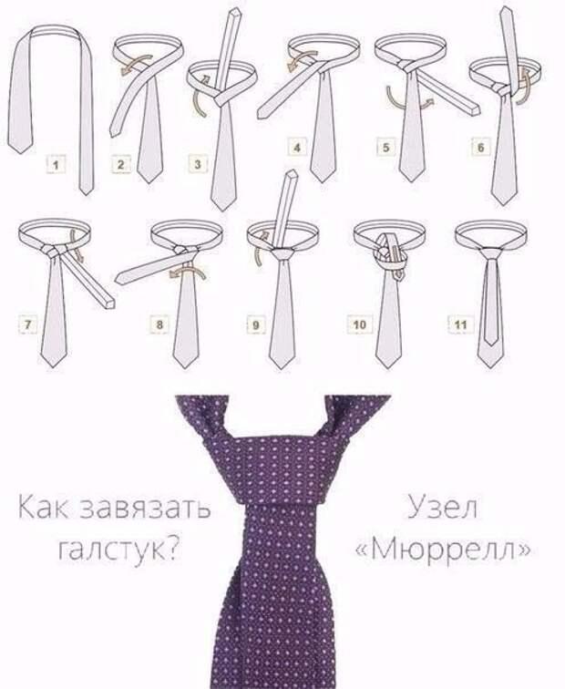 УЗЕЛОК НА ПАМЯТЬ. Как завязать галстук