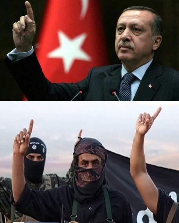 erdogan-jabhat al-Nusra.jpg