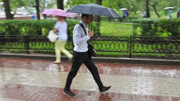 Теплая и дождливая погода ожидается на следующей неделе в регионах Центральной России