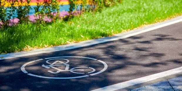 На Сельскохозяйственной появится временная велодорожка