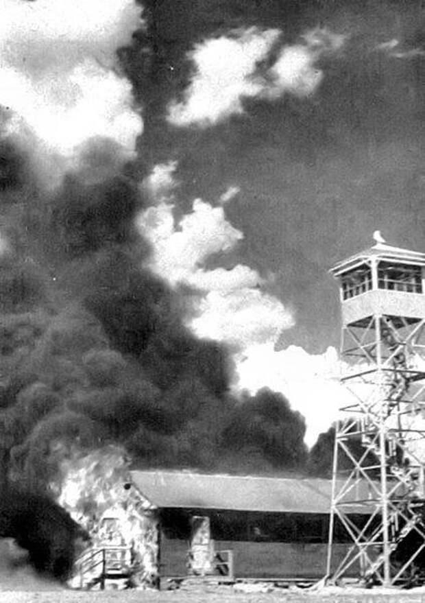 Мышиная бомба. Как стоматолог из Пенсильвании планировал сжечь Токио напалмом