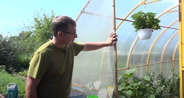 Вести.Интервью: Владислав Кундасев, агроном