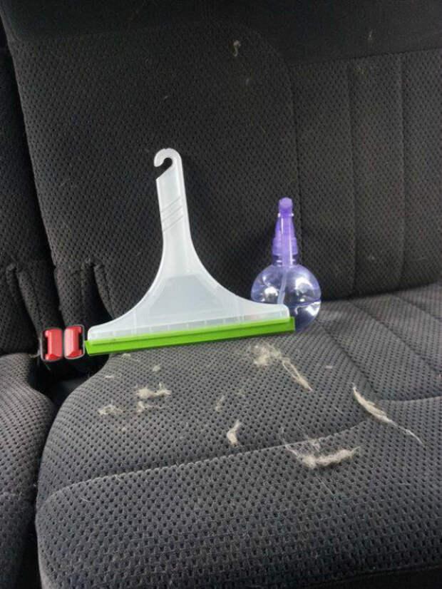 Почистить сиденья от шерсти.