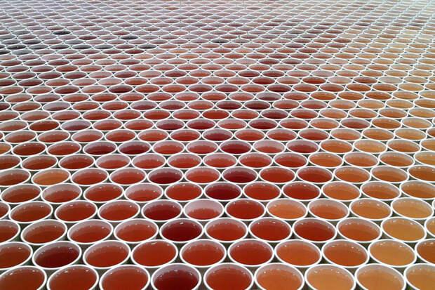 66 000 стаканчиков с водой на полу. Вы потеряете дар речи, когда увидите, что получилось в итоге!