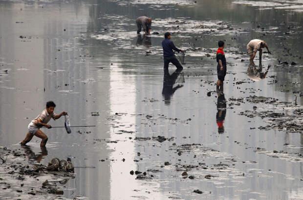 26. Рыбаки собирают рыбу в грязном канале, Пекин загрязнение, китай, экология