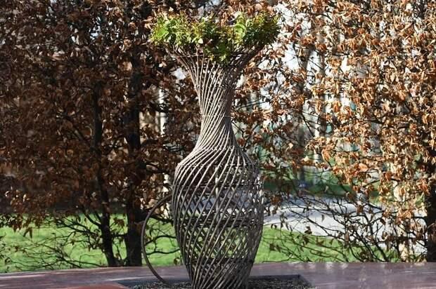 В парке «Краснодар» появились 70 живых ваз