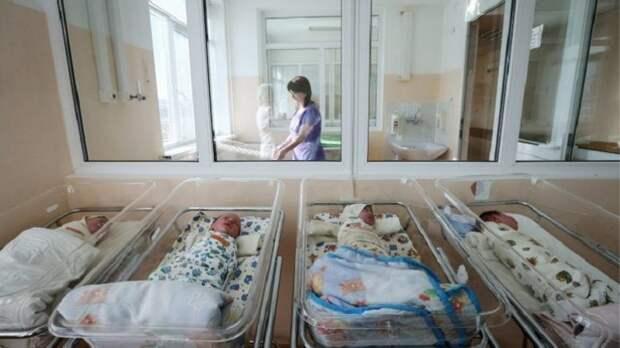 Рождаемость за полгода выросла только в двух регионах России
