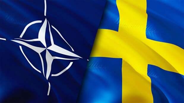 """В Швеции назвали позором помощь НАТО в попытке """"взять Россию в кольцо"""""""