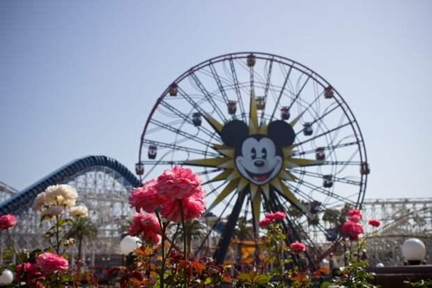 15 место. Диснейленд в Анахайм, в Калифорнии. Каждый год там весело проводит время 16,2 миллиона человек.