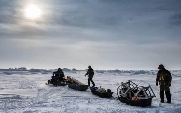 Россиянам предложили бесплатно выдавать гектар в Арктике