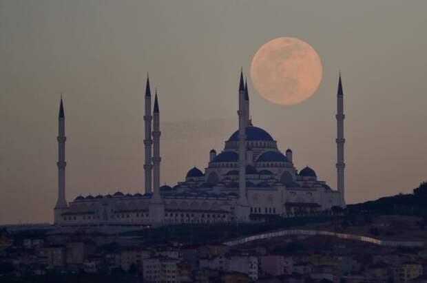 В Турции с 29 апреля вводится полный локдаун