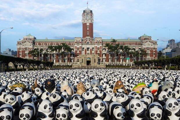 1600 панд из папье-маше от Paulo Grangeon