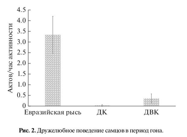 Рис. 2. Дружелюбное поведение самцов в период гона.