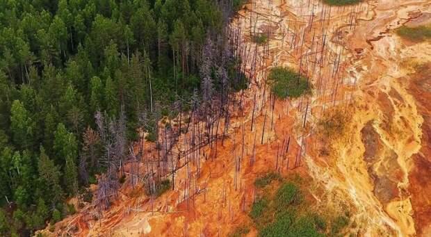 6 страшных фото кислотных рек в Свердловской области, которые выжигают леса