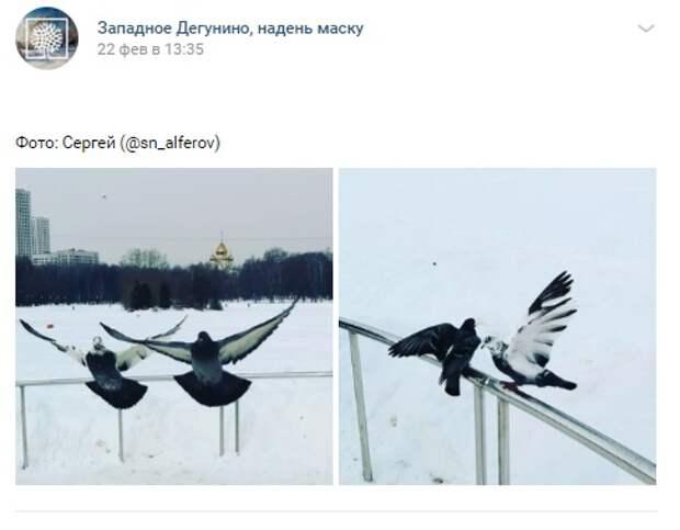 Фото дня: на Ангарских повеяло весной