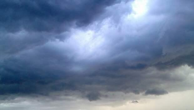 «Желтый» уровень опасности погоды из‑за ветра объявили в Московском регионе