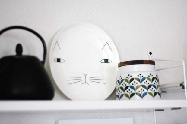 Кошко-тарелка