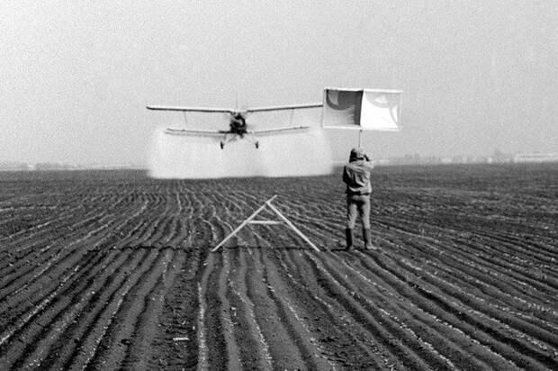 Зачем в СССР сбрасывали с самолетов божьих коровок