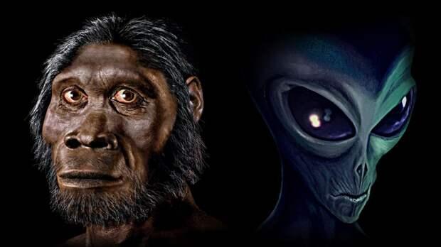 Мы инопланетяне