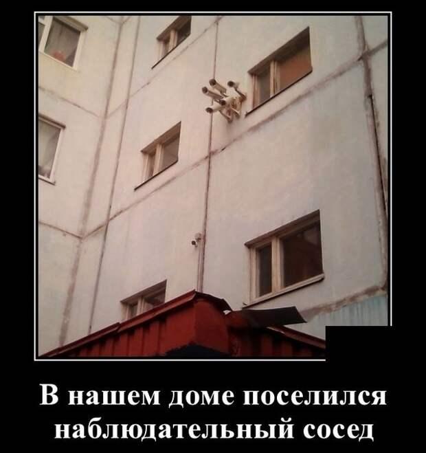 Демотиваторы №2194 (20 фото)