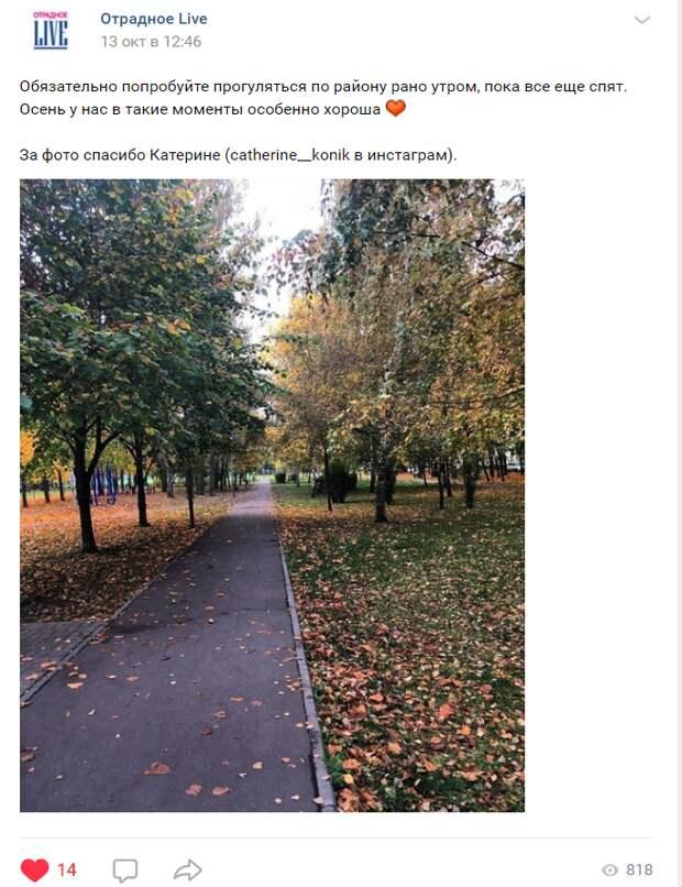 Москвичку впечатлили утренние улицы в Отрадном