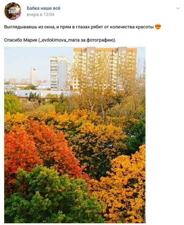 Фото дня: осенние краски Бабушкинского