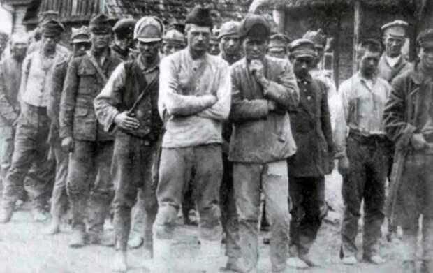 Сколько поляки уничтожили пленных красноармейцев