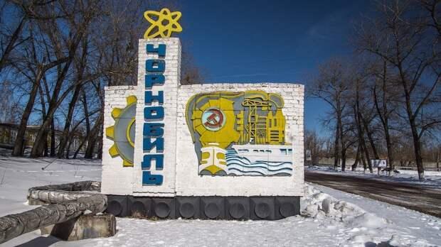 Горилку из чернобыльских яблок стали производить в Закарпатье