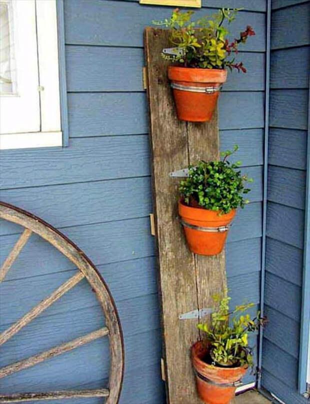 Вертикальная планка с горшками. | Фото: diytomake.com.