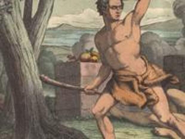 Где Каин и Авель взяли себе жён