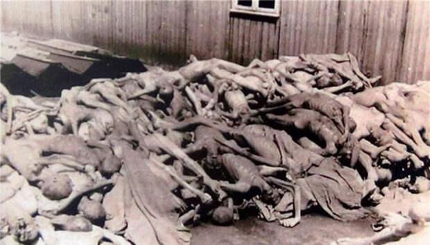 Побег из лагеря смерти: как 500 измученных узников обманули палачей Маутхаузена