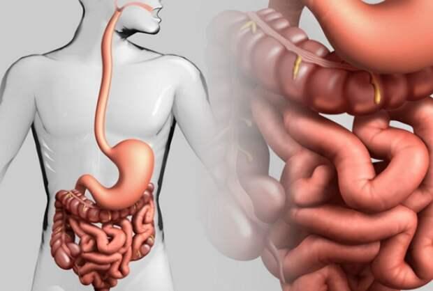 5 упражнений, которые помогают желудку и кишечнику работать как часы