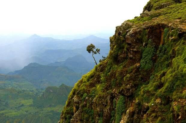 RoofofAfrica19 «Крыша Африки»: впечатляющая красота Эфиопского нагорья