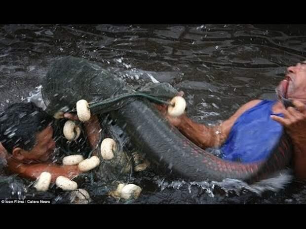 Подборка нереальных и редких случаев на рыбалке. Круто!
