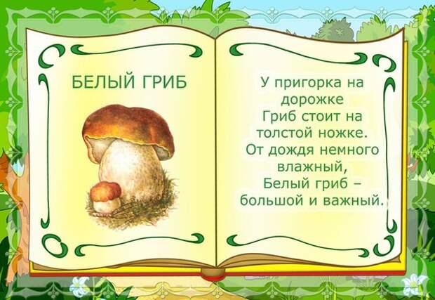 Детский мир. Карточки со стихами. Грибы