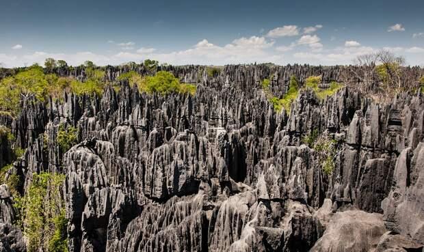 13. Мадагаскар. Заповедник Цинжи-дю-Бемараха. (Ralph Kränzlein) земля, природа