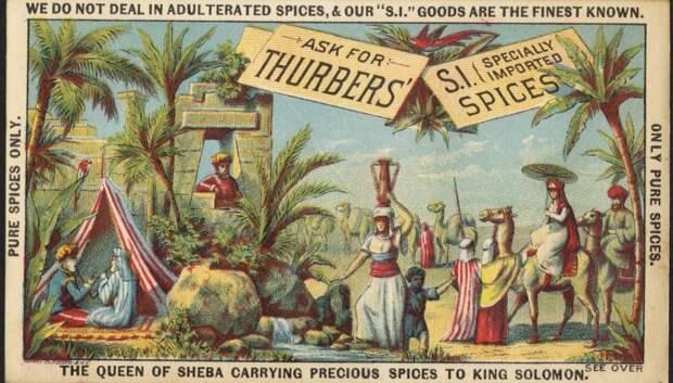 Занимательная история специй: как пряности лечат и утешают человечество